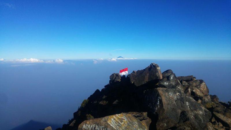 Pendakian Gunung Arjuno Dan Welirang Semua Hal Yang Anda Harus Tahu Go Volcano